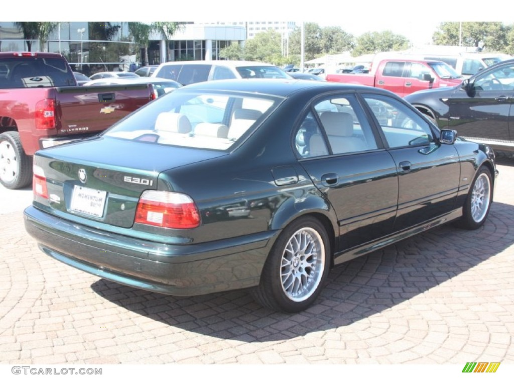 oxford green metallic 2002 bmw 5 series 530i sedan. Black Bedroom Furniture Sets. Home Design Ideas