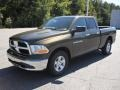 2012 Sagebrush Pearl Dodge Ram 1500 SLT Quad Cab  photo #1