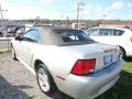 2001 Silver Metallic Ford Mustang V6 Convertible  photo #2