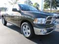 2012 Sagebrush Pearl Dodge Ram 1500 Big Horn Crew Cab  photo #4