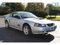 2001 Silver Metallic Ford Mustang GT Coupe  photo #7