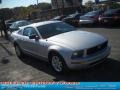 2007 Satin Silver Metallic Ford Mustang V6 Deluxe Coupe  photo #17