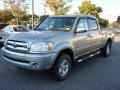 2005 Silver Sky Metallic Toyota Tundra SR5 Double Cab 4x4  photo #6