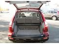 Gray Trunk Photo for 2009 Honda CR-V #56312910