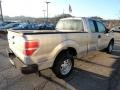 Ingot Silver Metallic - F150 XL SuperCab Photo No. 4