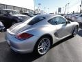 2009 Arctic Silver Metallic Porsche Cayman S  photo #7