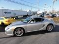 2009 Arctic Silver Metallic Porsche Cayman S  photo #10