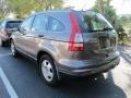 2010 Polished Metal Metallic Honda CR-V LX  photo #3