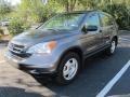 2010 Polished Metal Metallic Honda CR-V LX  photo #4