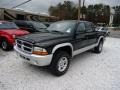 2004 Black Dodge Dakota SLT Quad Cab 4x4  photo #2