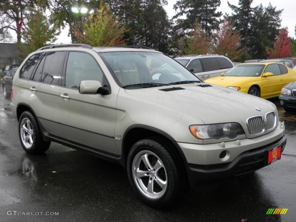 Pearl Beige Metallic 2002 Bmw X5 44i Exterior Photo 57882139