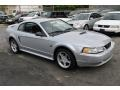 Silver Metallic 2000 Ford Mustang Gallery