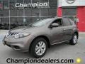 2011 Tinted Bronze Nissan Murano SV  photo #1