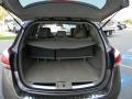 2011 Tinted Bronze Nissan Murano S  photo #8