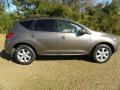 2010 Tinted Bronze Metallic Nissan Murano SL  photo #14