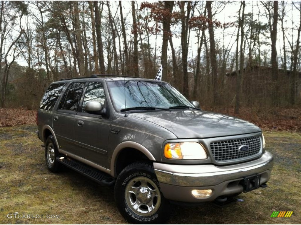 1999 spruce green metallic ford expedition eddie bauer 4x4 59002042 gtcarlot com car color galleries gtcarlot com