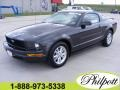 2007 Alloy Metallic Ford Mustang V6 Deluxe Coupe  photo #1