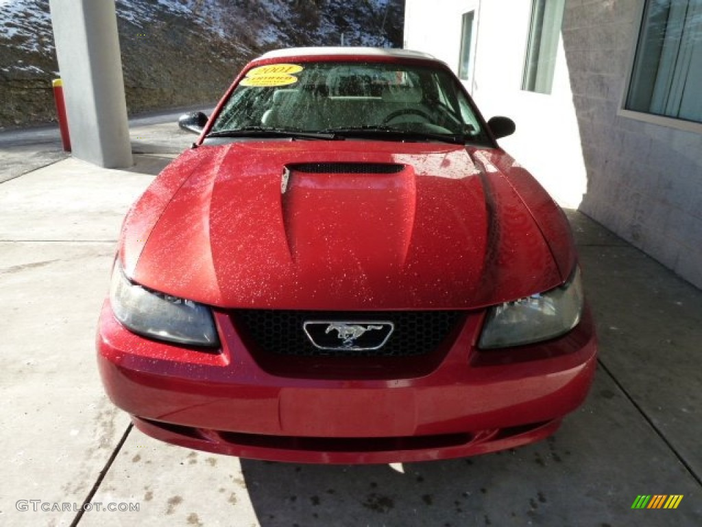 2001 Mustang V6 Convertible - Laser Red Metallic / Oxford White photo #5
