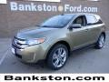 Ginger Ale Metallic 2012 Ford Edge Gallery