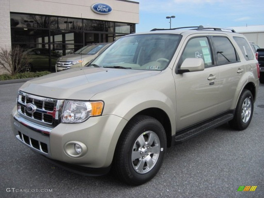 gold leaf metallic 2012 ford escape limited 4wd exterior photo. Cars Review. Best American Auto & Cars Review