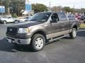 Dark Stone Metallic 2006 Ford F150 Gallery