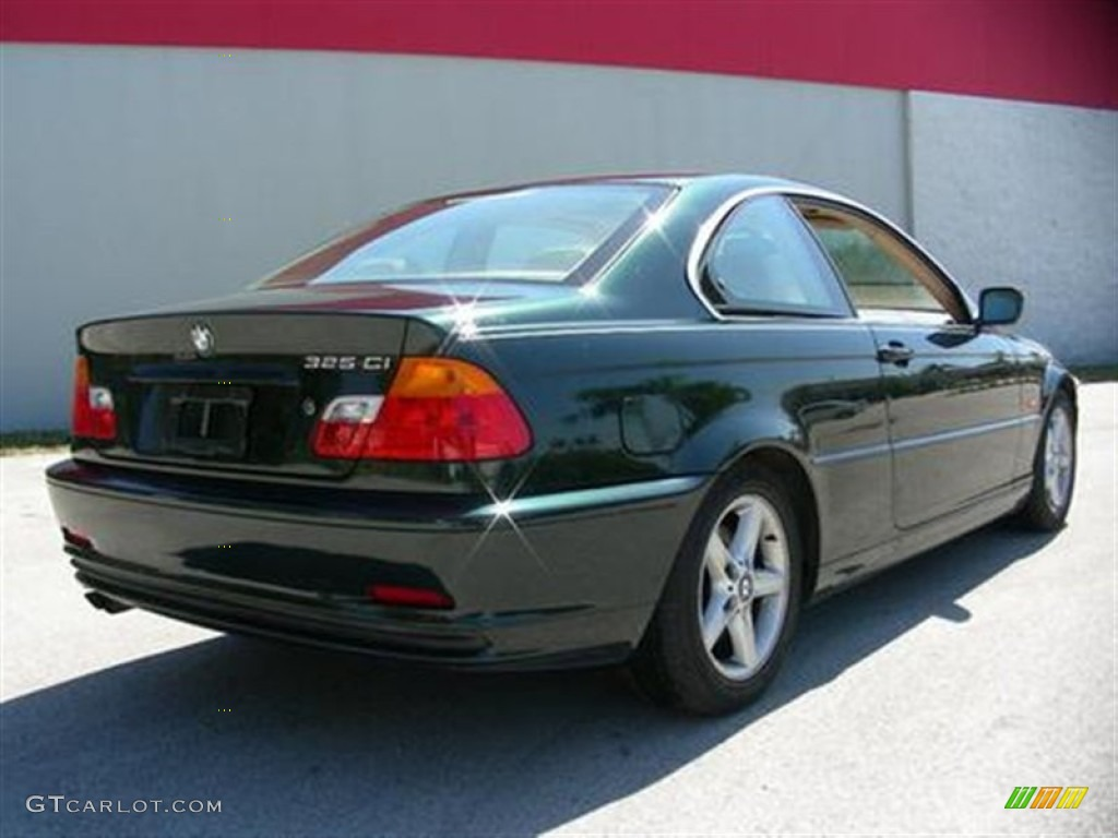 2001 Fern Green Metallic Bmw 3 Series 325i Coupe 60111504