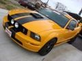 2007 Grabber Orange Ford Mustang GT Premium Coupe  photo #10