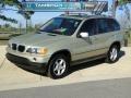 2002 Pearl Beige Metallic BMW X5 3.0i  photo #1