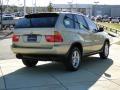2002 Pearl Beige Metallic BMW X5 3.0i  photo #5
