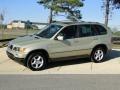 2002 Pearl Beige Metallic BMW X5 3.0i  photo #9
