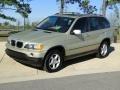 2002 Pearl Beige Metallic BMW X5 3.0i  photo #10