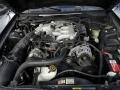 2003 True Blue Metallic Ford Mustang V6 Coupe  photo #24