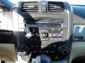 2010 Opal Sage Metallic Honda CR-V EX-L AWD  photo #18