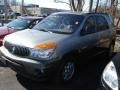 Light Spiral Gray Metallic 2003 Buick Rendezvous CX AWD