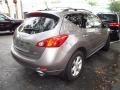 2010 Tinted Bronze Metallic Nissan Murano SL  photo #2