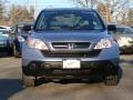 2009 Glacier Blue Metallic Honda CR-V LX 4WD  photo #6