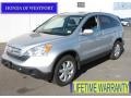 2009 Alabaster Silver Metallic Honda CR-V EX-L 4WD  photo #1