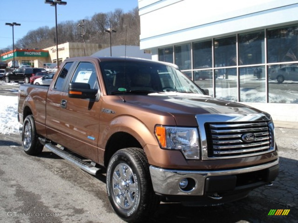 2012 f150 xlt supercab 4x4 golden bronze metallic pale adobe photo 2