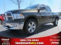 2012 Sagebrush Pearl Dodge Ram 1500 Big Horn Quad Cab  photo #1