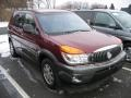Medium Red 2002 Buick Rendezvous CX