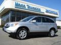 2010 Alabaster Silver Metallic Honda CR-V EX-L AWD  photo #1