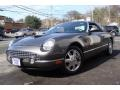 2003 Mountain Shadow Grey Ford Thunderbird Premium Roadster  photo #1