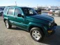 Timberline Green Metallic 2003 Jeep Liberty Gallery