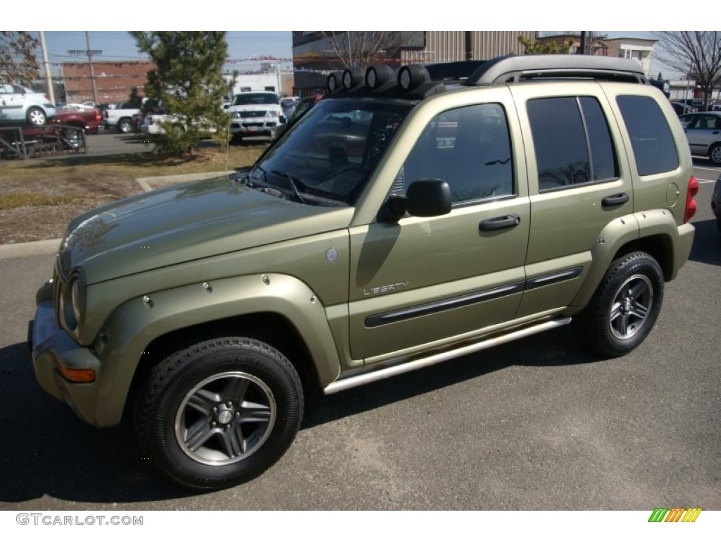 2004 cactus green pearl jeep liberty renegade 4x4. Black Bedroom Furniture Sets. Home Design Ideas