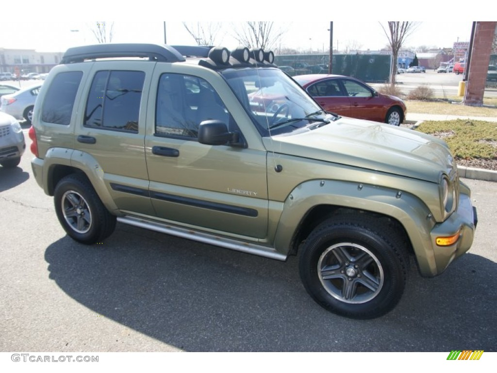 jeep liberty renegade 2004 4x4