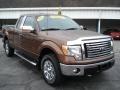 JQ - Golden Bronze Metallic Ford F150 (2011-2012)