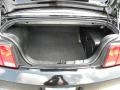 2007 Black Ford Mustang V6 Premium Convertible  photo #12