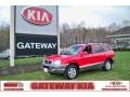 Canyon Red 2003 Hyundai Santa Fe Gallery
