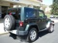2011 Natural Green Pearl Jeep Wrangler Sahara 4x4  photo #8