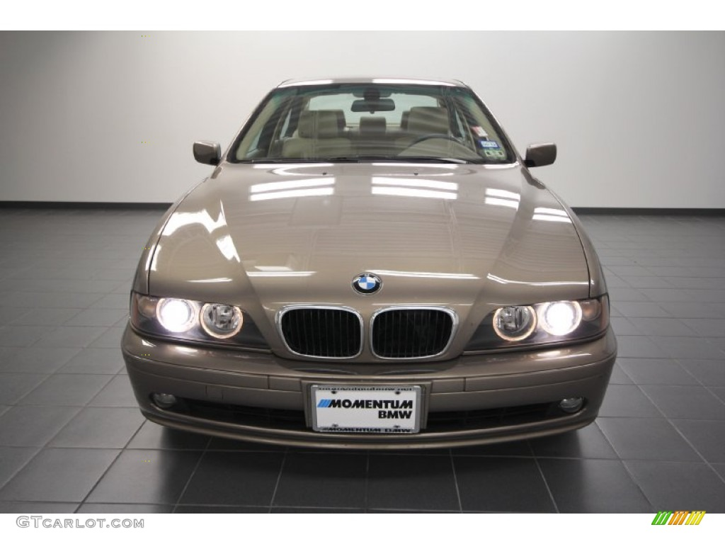 2002 kalahari beige metallic bmw 5 series 530i sedan. Black Bedroom Furniture Sets. Home Design Ideas
